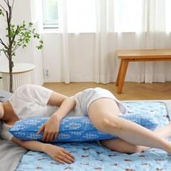 포레스트 블루 아이스 쿨부인 바디필로우 여름매트