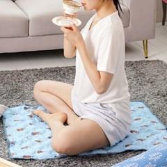 미스터 피넛 쿨매트(중형) 아이스매트