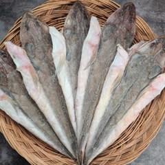 국산 반건조 장대 양태 8미 (43cm400g내외) 생선