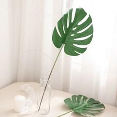 그로우몬스잎가지 중 59cm 조화 인테리어 장식 FAIBFT