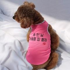 강아지옷 주인님말씀을잘듣자 메쉬티