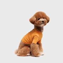 수피마 코튼 티셔츠 오렌지