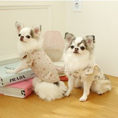 잔꽃러플 강아지티셔츠 2color 포쉬독