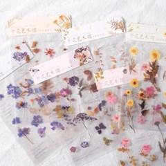 꽃 플라워 투명 필름 압화 다꾸 감성 스티커
