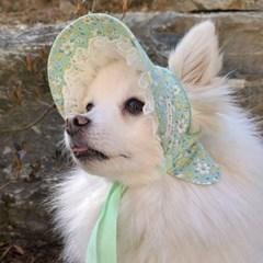민트봄날 샤방캡 강아지모자 아소비진