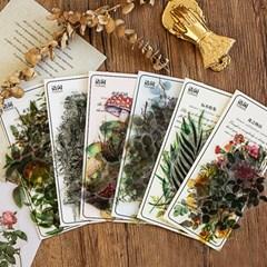 꽃 버섯 열매 플라워 투명 압화 다꾸 PET 스티커
