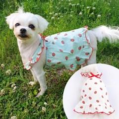 딸기프릴민소매 강아지원피스 강아지원피스 애견옷