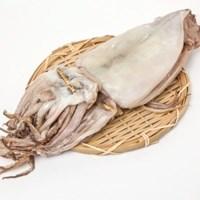 자연산 반건조 오징어 특대자 9마리(200g내외) 피데기