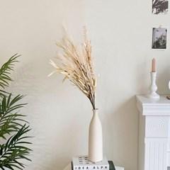 대나무잎 뮬리 팜파스 3color