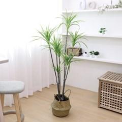 고급 인조나무 조화화분 드라세나 와네키 160cm