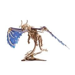 서리 용(Windstorm Dragon)
