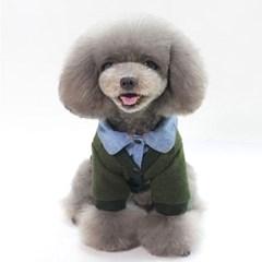 강아지 니트 셔츠레이어드 가디건 강아지옷
