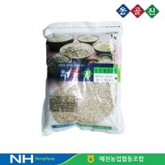예천농협 옹골진 국내산 햇 잡곡 보리쌀 1kg