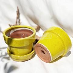 플라랜드 유광 유약 도자기 사기화분 옐로우 노랑 다육이 분갈이화분