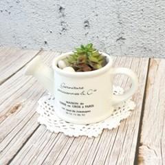 메종 물뿌리개 도자기 포트