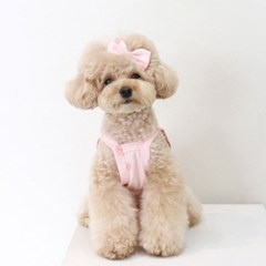 복숭아 강아지머리핀 루앤담