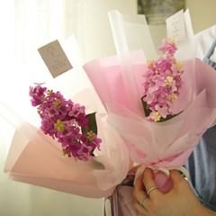 첫사랑 리라 라일락꽃다발 (메시지택포함) [3color]_(986256)
