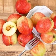 고당도 신비 복숭아 3kg(26-30과) 제철과일