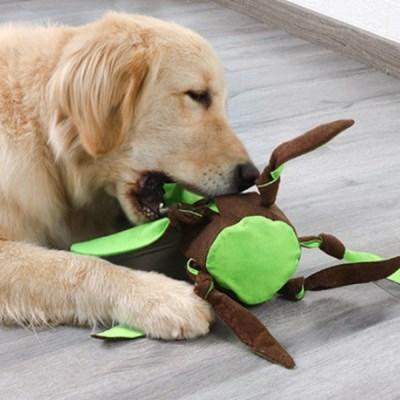 강아지 장난감 노즈워크 뽑기놀이 간식찾기