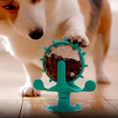 강아지 노즈워크 후각발달 간식놀이 사료놀이 회전장난감