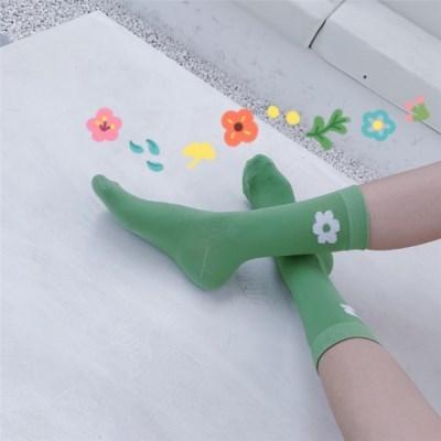 6p 세트 상큼한 포인트 꽃 여자중목양말 S162
