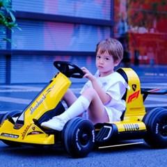 성인 어린이 공용 전동 자동차 루지카트 카트라이더 8