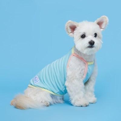 플로트 파스텔콤비나시 강아지옷 민트