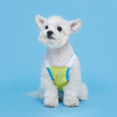 플로트 쿨메쉬썸머나시 강아지옷 옐로우