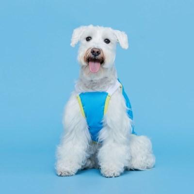 플로트 쿨메쉬썸머나시 강아지옷 블루