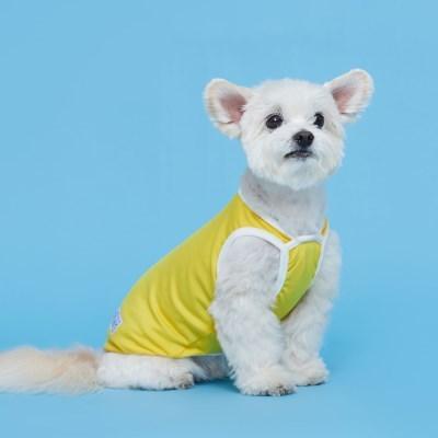 플로트 릴렉스나시 강아지옷 옐로우