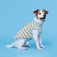 플로트 프레쉬민소매티셔츠 강아지옷 스카이옐로우