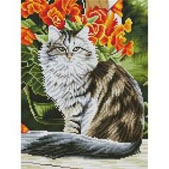 메인쿤 고양이 (캔버스형) 보석십자수 30x40