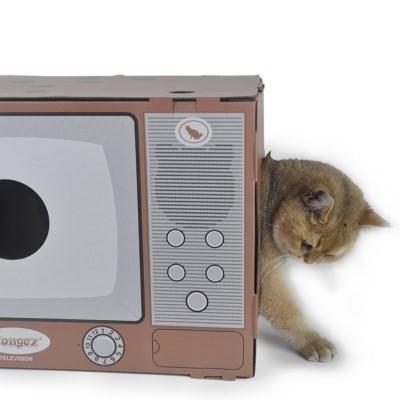 고양이 티비박스