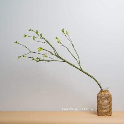 까유니아 감성 조화 : 봄꽃 나뭇가지