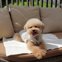 개달당 휴대용 야외매트 강아지 접이식 산책매트