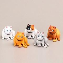 귀여운 뚠뚠이 고양이 피규어 5종세트