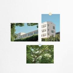 Summer days (3종 SET) 여름 분위기 감성사진 엽서세트