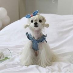 핀턱 데님 강아지머리핀 펫츠앤미