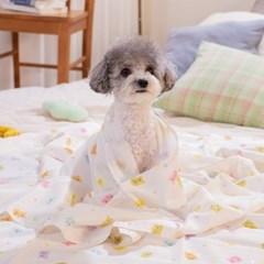멀티 인견 강아지 고양이 여름 블랭킷 파스텔베어