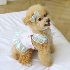 오로라 리본 강아지 머리삔 펫츠앤미