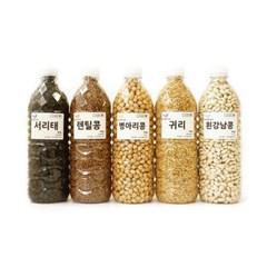 국산 수입산 콩 700g 병아리콩 서리태 흰강낭콩 쥐눈이 검은콩 백태