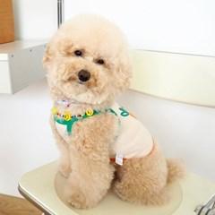 [암올셋] 컬러풀 스마일 목걸이_Cheerful Smile + bracelet