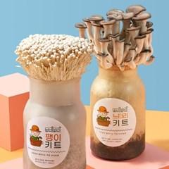 무럭무럭 느타리버섯+팽이버섯 키우기 키트