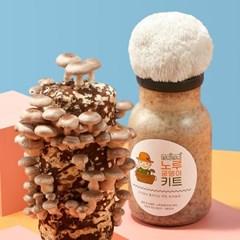무럭무럭 표고버섯+노루궁뎅이버섯 키우기 키트