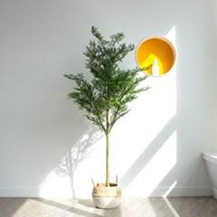 푸르른 측백나무 대형 나무 조화 2size j