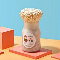 [추석조카선물][무럭무럭] 가족과 함께 버섯키우기패키지