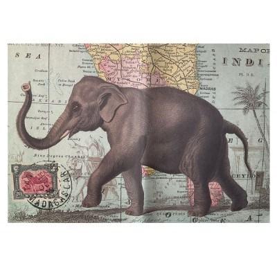카발리니 일러스트 빈티지포스터 Elephant