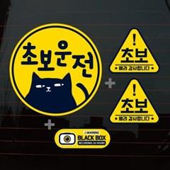 칼라자동차스티커S1_C009_검은고양이 초보운전