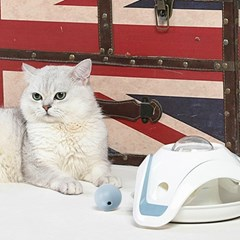 고양이 반자동 장난감 우주비행볼