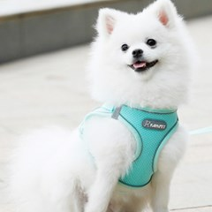 [아이니샵] 강아지 리드줄 여름 자외선 차단 쿨조끼